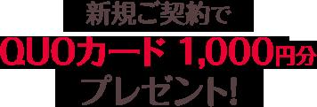 新規ご契約でQUOカード1,000円分プレゼント!